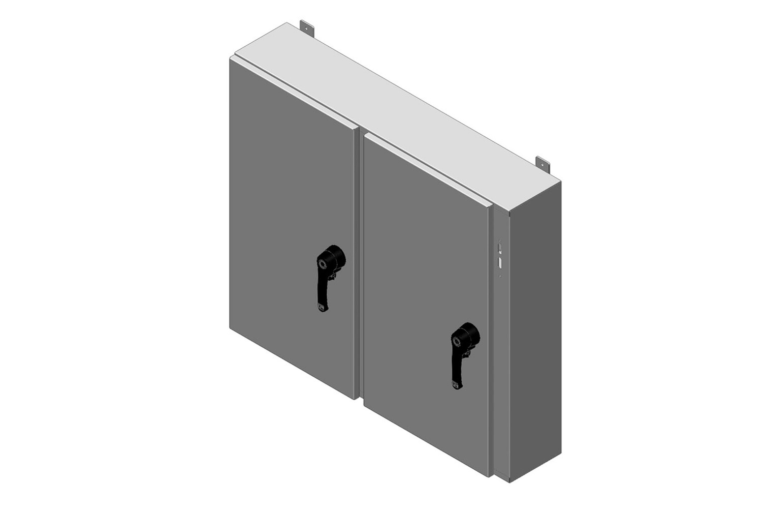 RMR Standard Wall-Mount Disconnect Enclosure, Type 4, with Solid Double Door Image