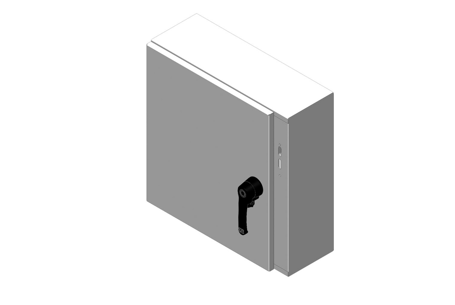RMR Standard Wall-Mount Disconnect Enclosure, Type 4, with Solid Single Door Image